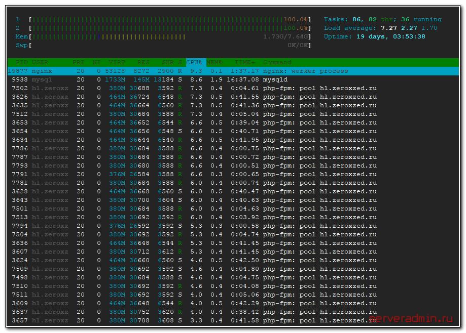 Нагрузка на сервер от ddos