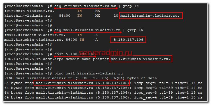 Проверка DNS записей