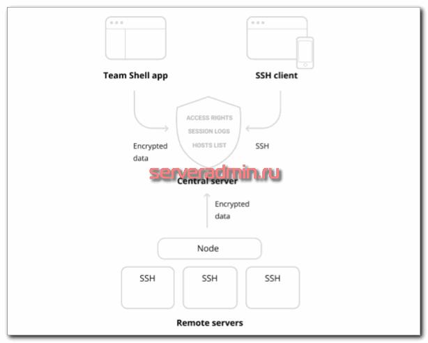 Схема работы TeamShell